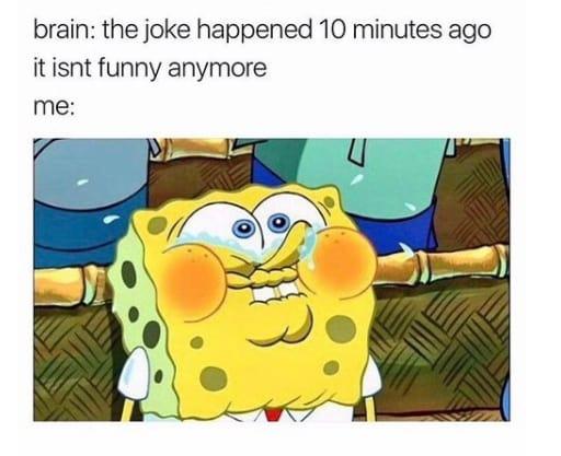 daily spongebob memes