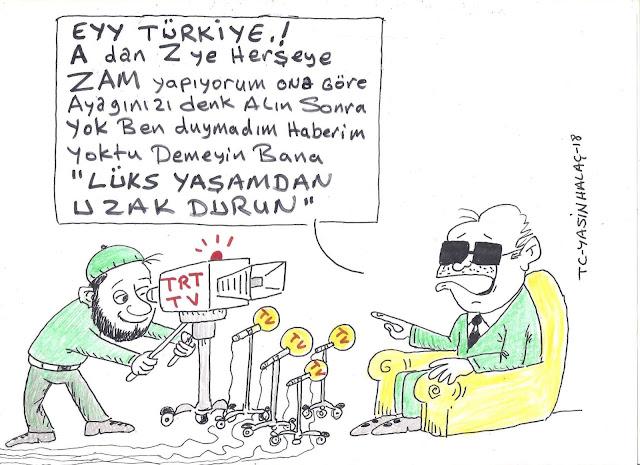zam karikatür