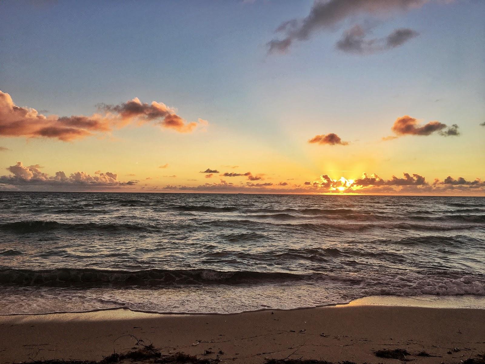 Miami, Florida, ejnets