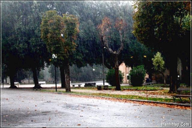 mưa thu rơi rơi trên con đường vắng