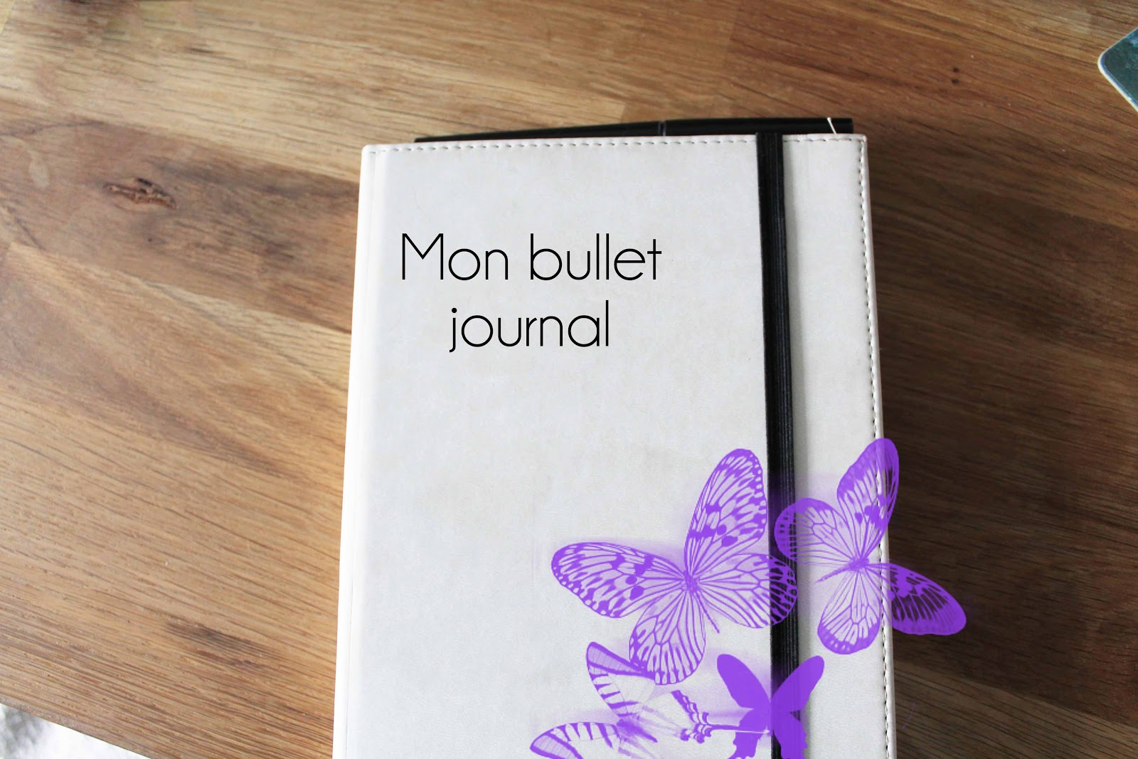 mon bullet journal. Black Bedroom Furniture Sets. Home Design Ideas