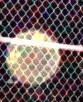orb behind fence