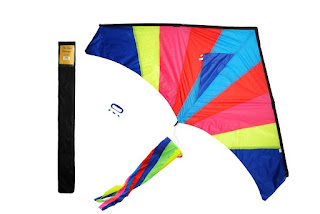 Delta Kite for Kids with Tail