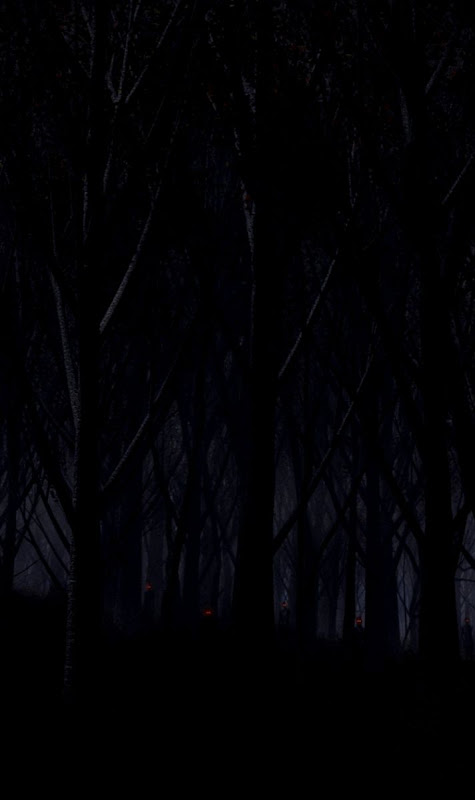 Dark Forest Iphone Wallpaper | Wallpapers 1080p