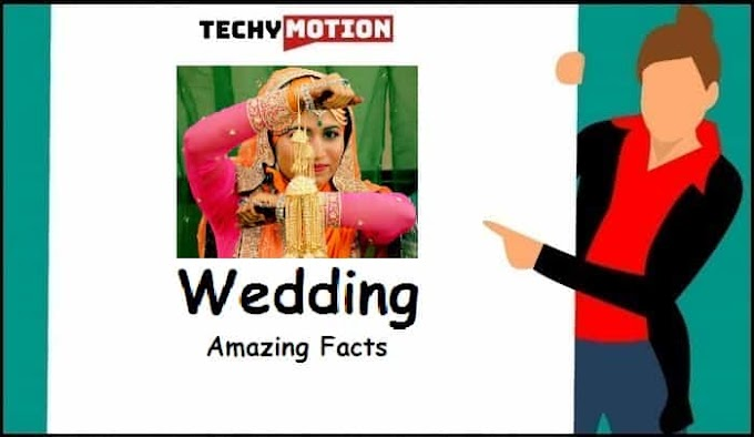 15 Amazing Facts About Wedding
