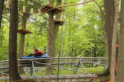 Ridge Runner Mountain Coaster, Blue Mountain, Collingwood, ON