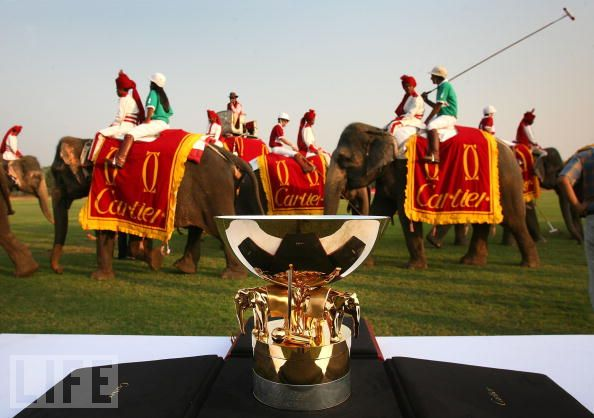 Elephant Polo Match, Jaipur
