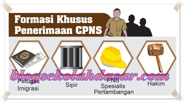 Kabar Terbaru Pemerintah Akan Buka Penerimaan CPNS Formasi Khusus