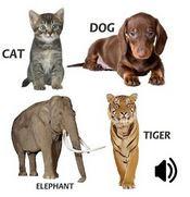 aplikasi edukasi anak untuk memperkenalkan suara hewan