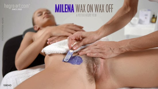 Hair removal system wax nudist magnificent idea