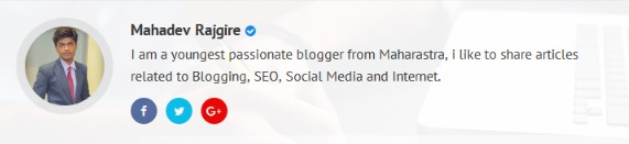 Responsive Author Bio widget Box Below Post In Blogger With Blur Background.