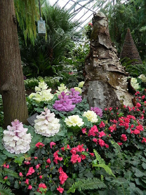 2018 Allan Gardens Conservatory Winter Flower Show massed red azaleas and ornamental cabbage by garden muses--not another Toronto gardening blog