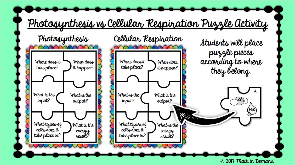 Photosynthesis Vs Cellular Respiration In Google Slides