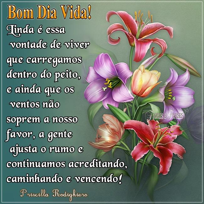 Tag Flores E Frases De Bom Dia Domingo
