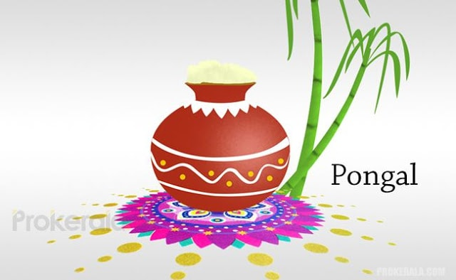 Happy Pongal wishes greetings sms messages