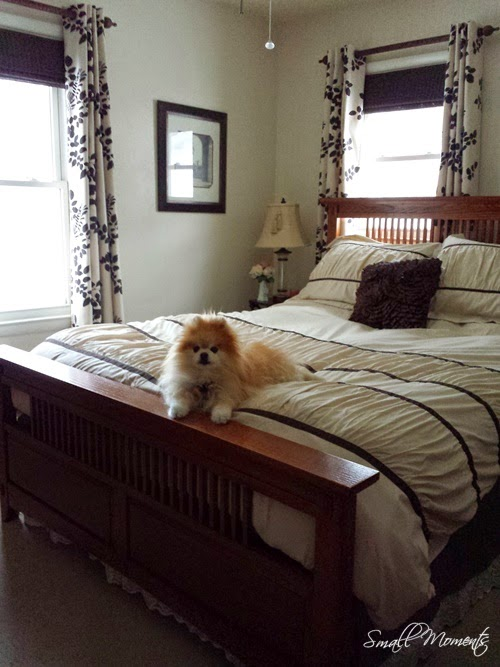 Master Bedroom with Tia on the Bed