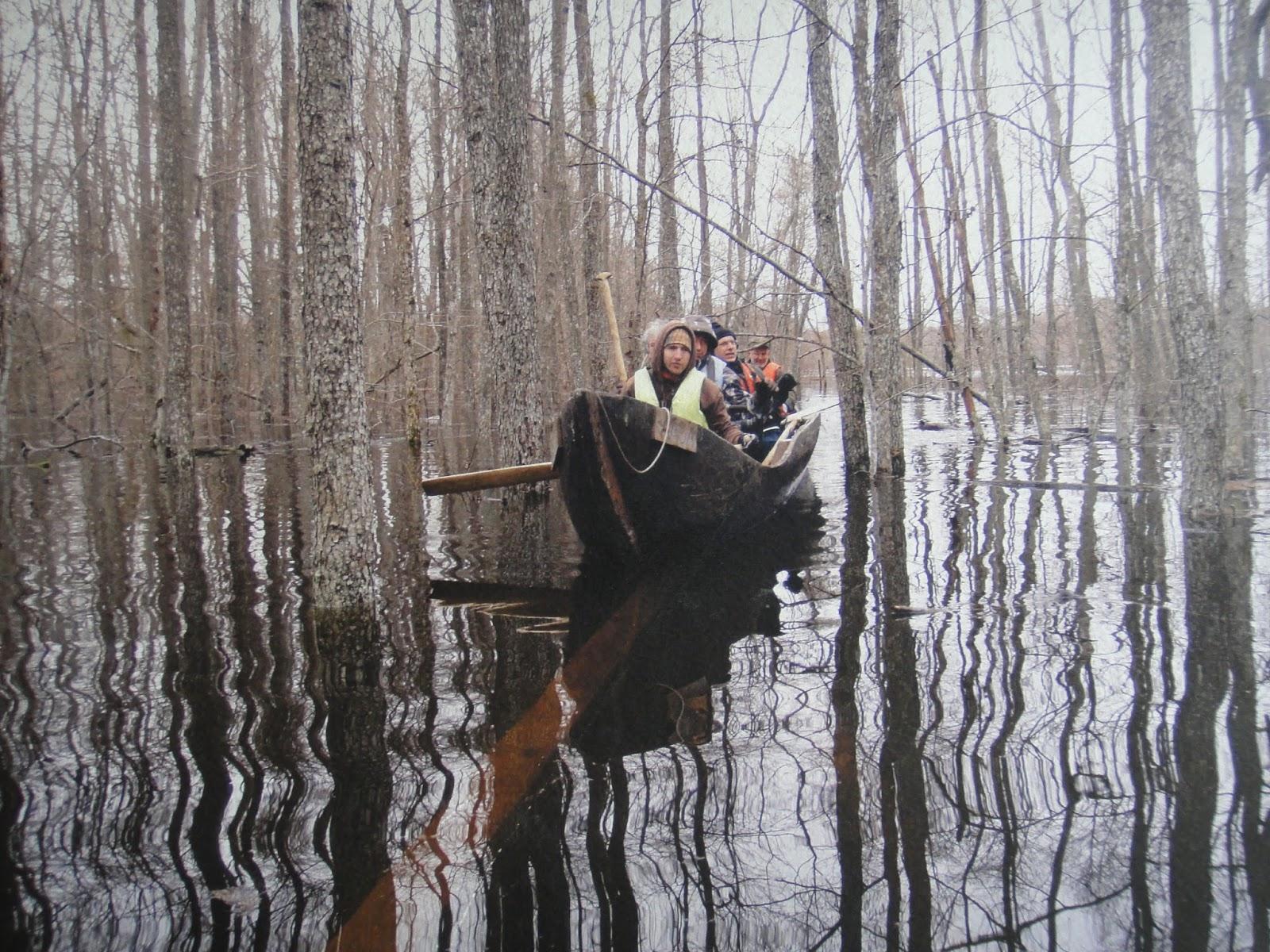 この写真のように春先には河川が氾濫し周辺の林は水に浸かります。 エストニア便り7