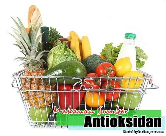 Makanan Tinggi Anti-Oksidan
