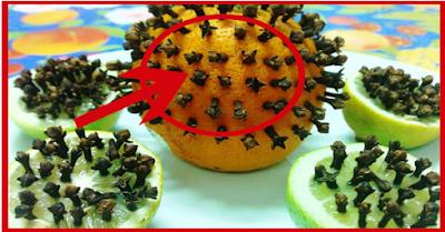 وصفة سحرية غير مكلفة للتخلص من الناموس في فصل الصيف