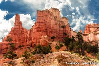 Published Cramer Imaging Photography
