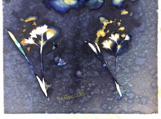 Wet Cyanotype_Sue Reno_Image 298