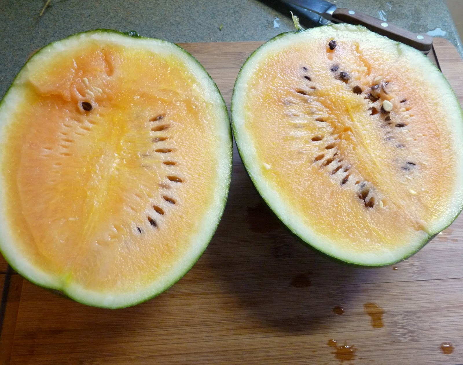 How to grow watermelon in Siberia in a greenhouse 46