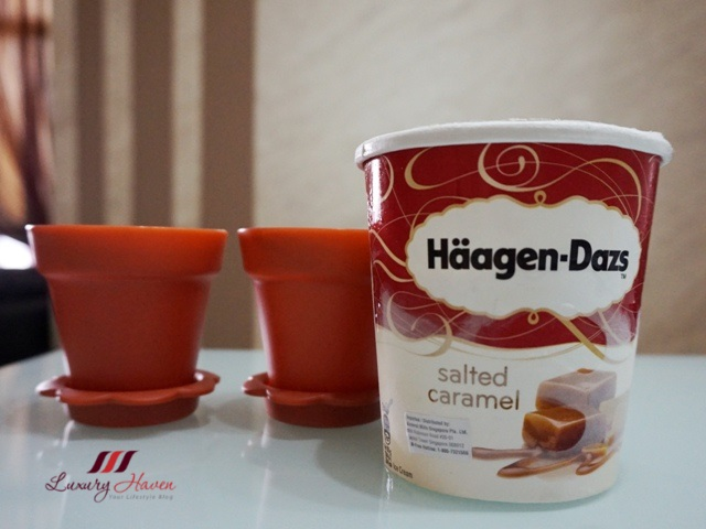 haagen dazs salted caramel ice cream recipe