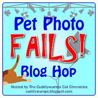 #PetPhotoFails