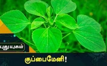 KuppaiMeni | Maruthuva Payankal | Arivom Arokiyam 01-09-2017 Puthuyugam Tv
