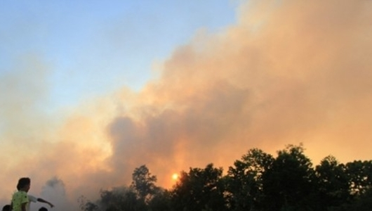 Kota Dumai Tetapkan Status Siaga Darurat Kebakaran Hutan dan Lahan