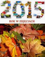 http://misiowyzakatek.blogspot.com/2015/11/rok-w-zdjeciach-listopad.html
