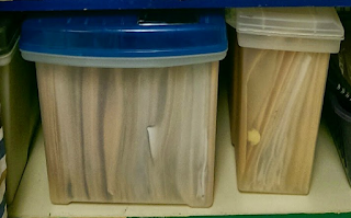 2 big plastic boxes on a shelf