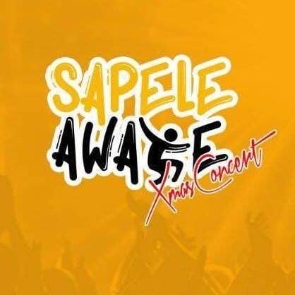 Initiators Of 'Sapele Awake' Promises To Bring Back Sapele's Glory, Visits LG Boss For Supports, Partnership