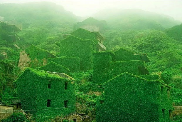 Nature 'Takes Back' Abandoned Village In China