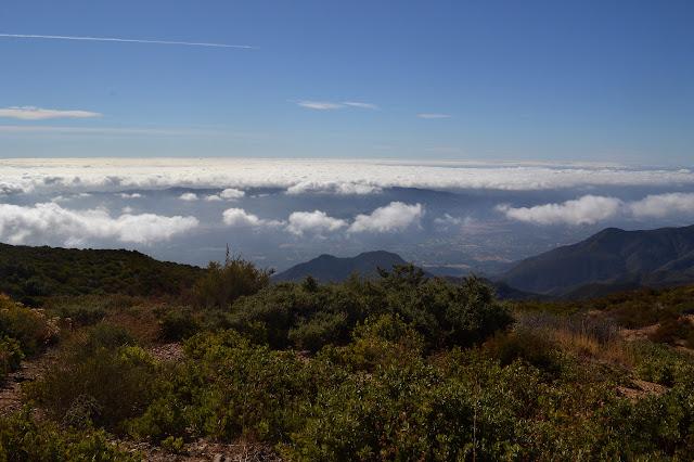 Sulphur Mountain again