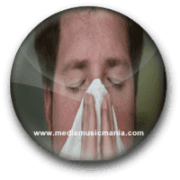 Instructions to Survive Allergy Season