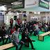 Palmicultura sostenible, negocio con futuro