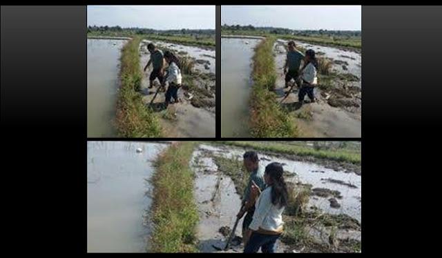 Untuk Mendukung Swasembada Pangan, Babinsa Selalu Dampingi Petani