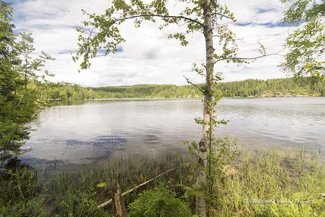 Vista de Sognsvann - Oslo por El Guisante Verde Project