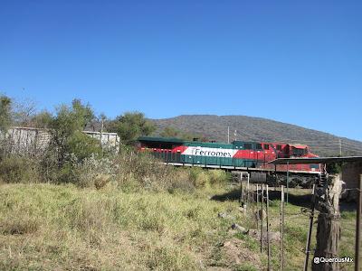 Una carrera con el tren