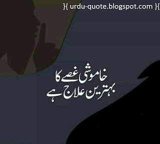 Urdu Lovely Quotes 16