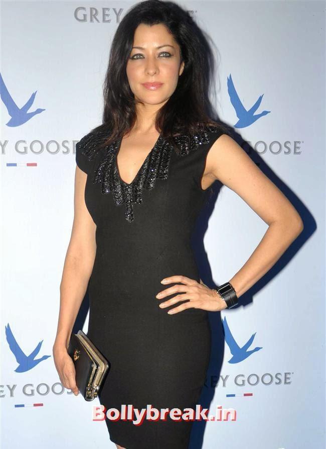 Aditi Govitrikar, Bollywood Celebs Sizzle at Grey Goose Style Du Jour 2013