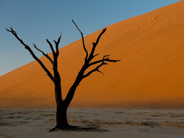 Duna Deserto della Namibia