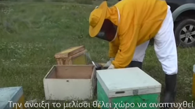 Προσθήκη ΦΥΛΛΩΝ ΚΗΡΗΘΡΑΣ & Ανάπτυξη των μελισσιών