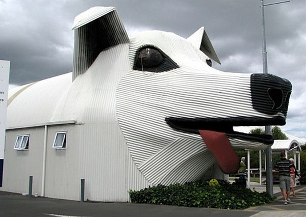 Dog House,New Zeland