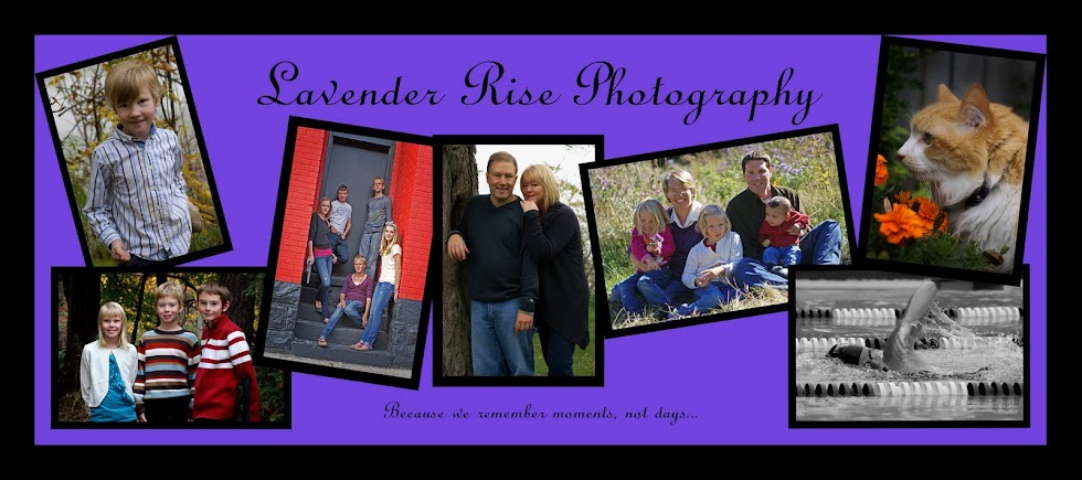 Lavender Rise Photography