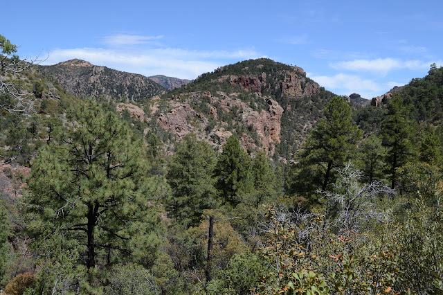 Red Rocks and Log Peak
