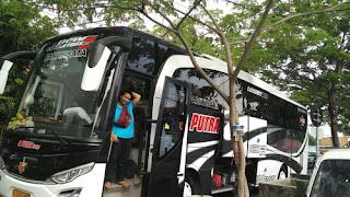 bus pariwisata surabaya trans, sewa bus pariwisata area surabaya