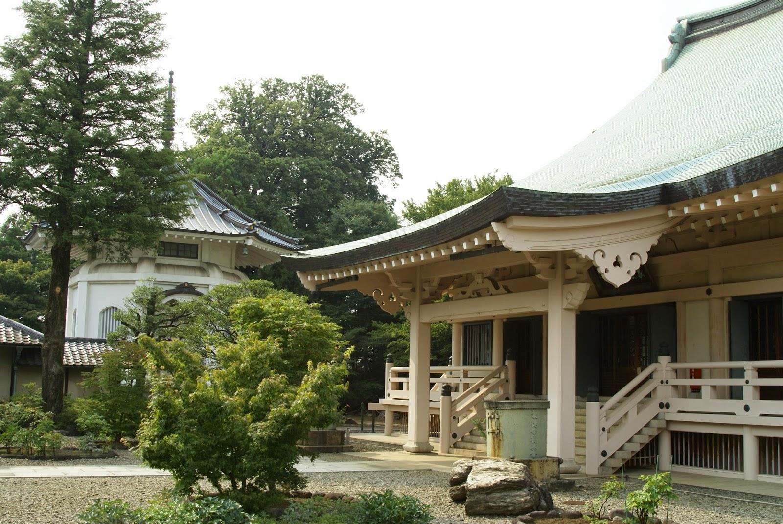 temple du chat