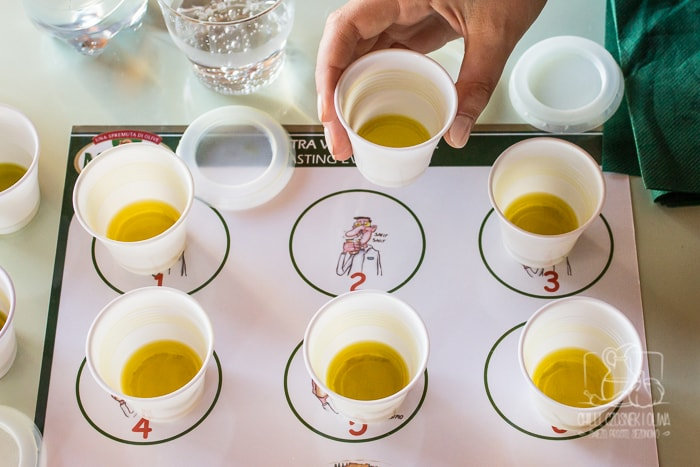 Jak sprawdzić czy oliwa jest dobrej jakości? - Relacja z kursu degustacji oliwy